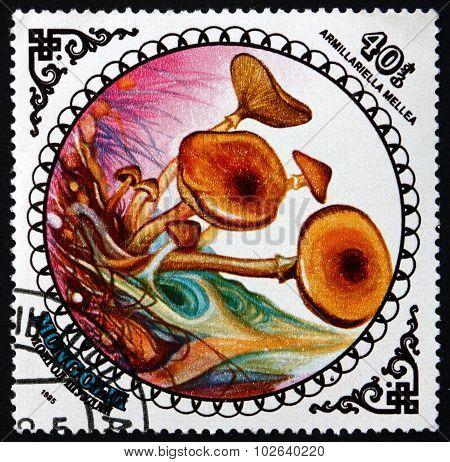 Postage Stamp Mongolia 1985 Honey Fungus, Mushroom