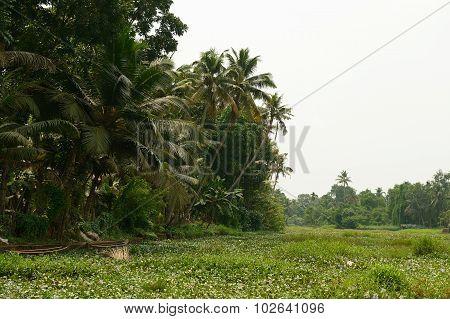 Kerala State In India