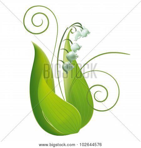 Thrush Flower