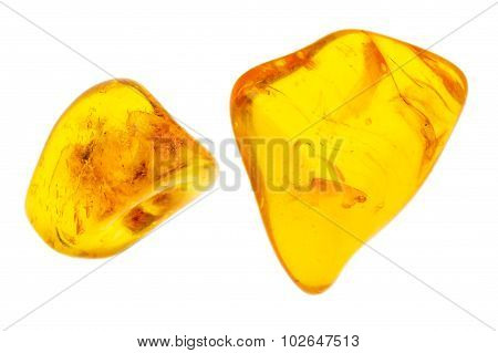 Two Pieces Of Amber