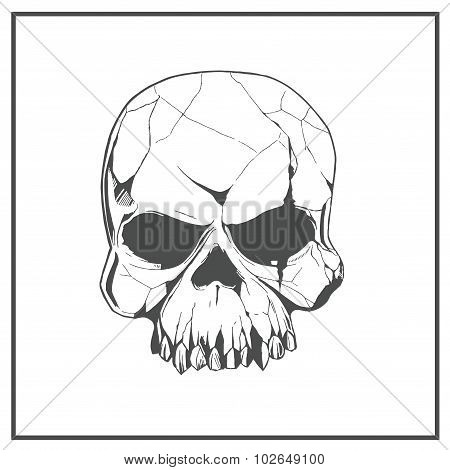 Hand drawn skull. The symbol day of the dead