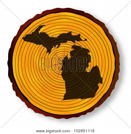 Michigan Map On Timber