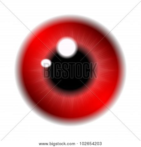 Image Of Red  Pupil Of The Eye, Eye Ball, Iris Eye. Realistic Vector Illustration Isolated On White