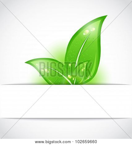 Green leaves sticking out of the cut paper