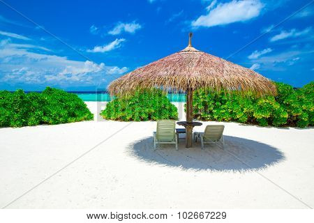 Maldives with few palm trees and blue lagoon