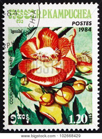 Postage Stamp Cambodia 1984 Canonball Tree, Plant