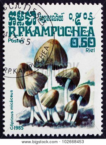 Postage Stamp Cambodia 1985 Mica Cap, Mushroom