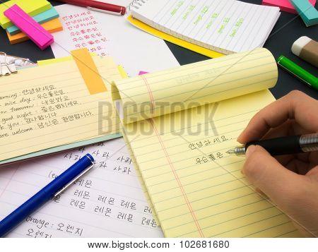 Writing New Language; Korean