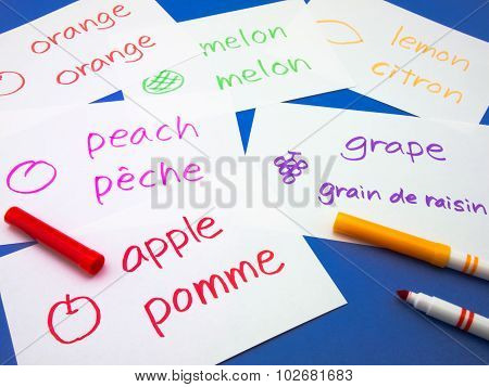 Making Language Flash Cards; French