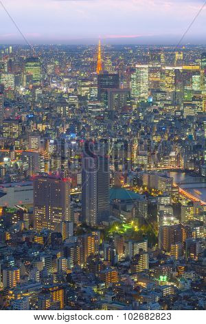 Tokyo tower and Tokyo city view in evening