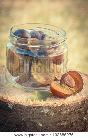 Vintage Photo, Plums In Glass Jar On Wooden Stump In Garden On Sunny Day