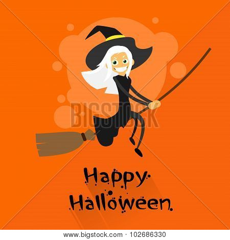 Witch Flying on Broom Halloween Costume Cartoon Character
