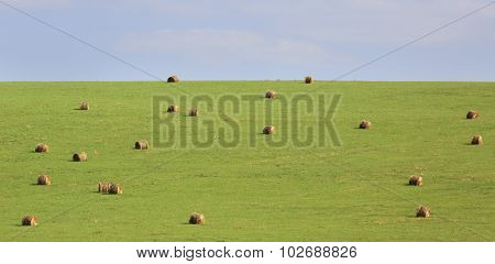 Beautiful green field with haystacks.