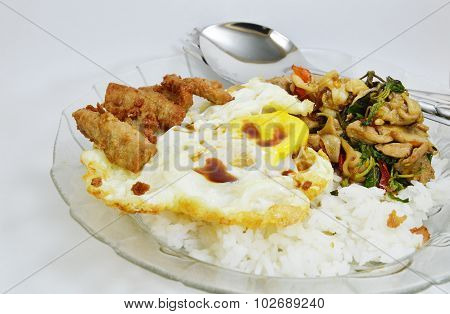 spicy fried chicken and squid with basil leaves on rice topping fried egg