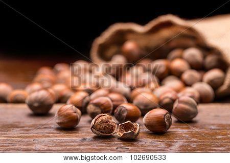 Filberts