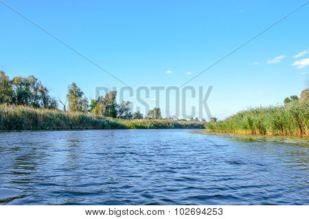 Landscape Of A Large River Shore Vegetation