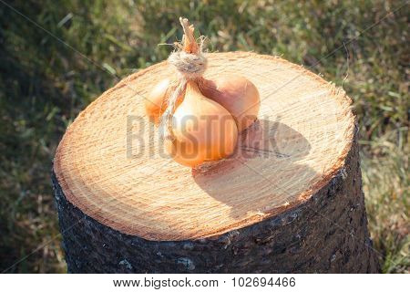 Vintage Photo, Natural Unpeeled Onions On Wooden Stump