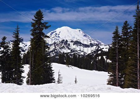 Snowcapped Mount Rainier