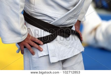 Master Of Karate With Black Belt And Kimono