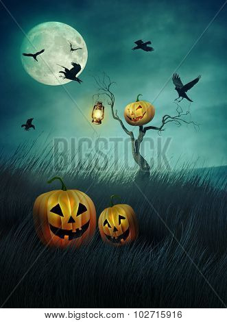 Pumpkin scarecrow in fields of tall grass at night