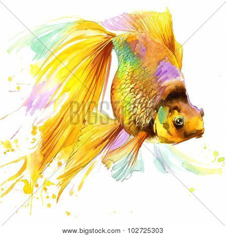 gold fish T-shirt graphics, gold fish illustration with splash watercolor textured background. illus