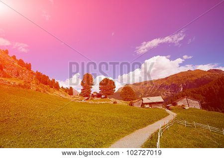 Alpine meadow with houses