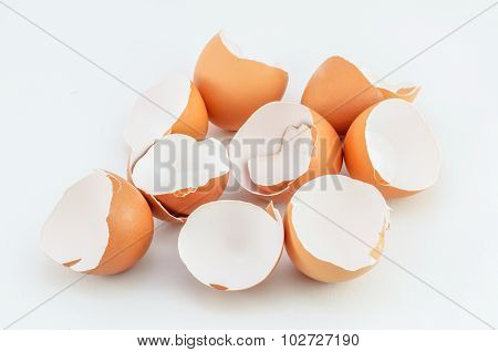 Eggshells On White Background