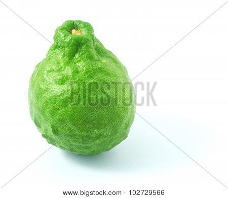 Fresh Kaffir Lime Fruit On A White Background