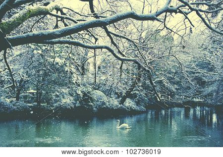 Swan Lake Japan Winter Concept