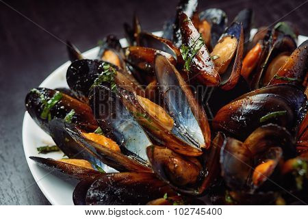 Seafood - Steamed Mussels on white plate