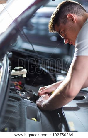 Auto Mechanic Fixing Car