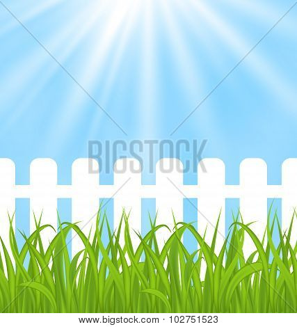 Fresh green grass over wood fence background