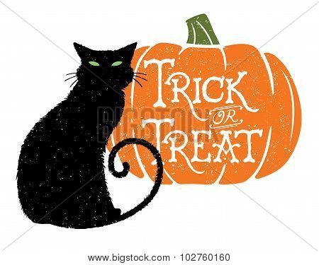 Trick or Treat Cat 2