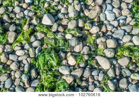 Seahurst Beach Rocks