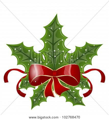 Christmas holly berry branches and bow isolated on white backgro
