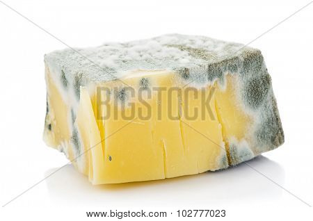 Decayed Cheese