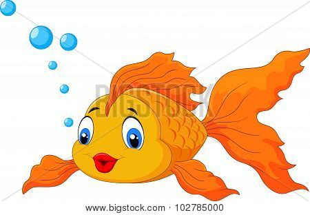 Cartoon cute golden fish isolated on white background