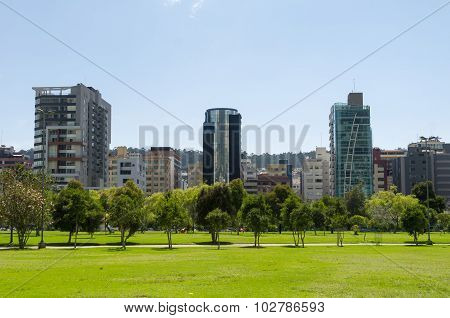 Inside La Carolina park in Quito, Ecuador. Beautiful green outdoors with some tall office buildings