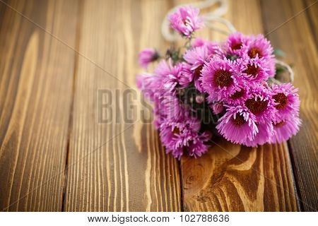 Bouquet Of Pink Chrysanthemums