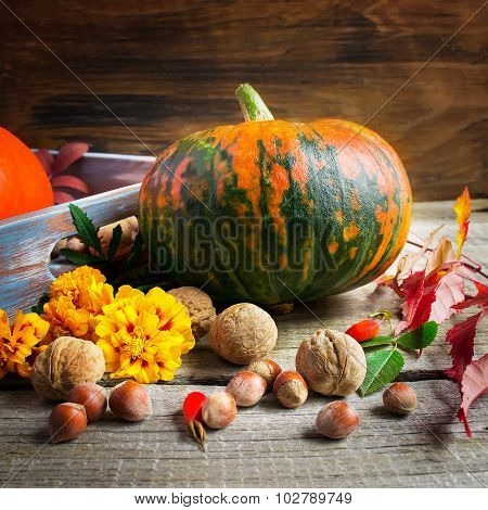 Pumpkin, Marigolds And Nuts On An Old Wooden Background. Autumn