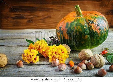 Autumn Still Life: Pumpkin, Walnuts, Marigolds