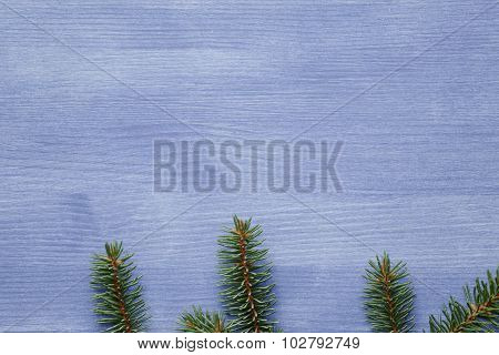 spruce twig on blue table, christmas