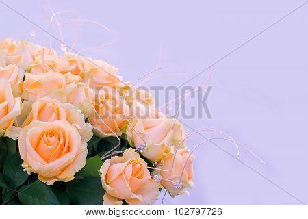 Bouquet Delicate Cream-colored Roses