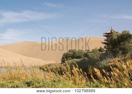 Oasis In Desert At Mingsha Shan, Dunhuang, Gansu Province, China.