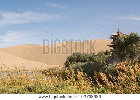 Oasis In Desert At Mingsha Shan, Dunhuang, Gansu Province, China.