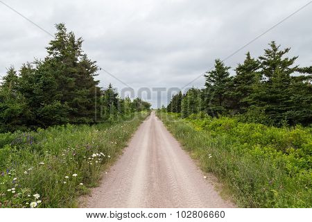 Dirt Tracks In Cape Breton Island
