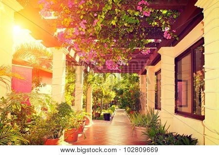 Landscaped terrace of a beautiful big house over sunset. Beauty vintage veranda with flowers. Tropical Garden. Beauty hotel