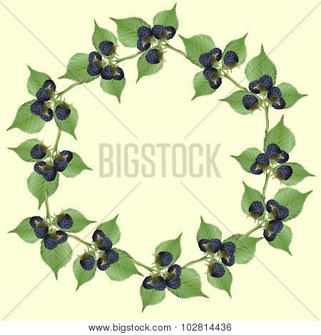 Frame Of Blackberry With Green Leaves