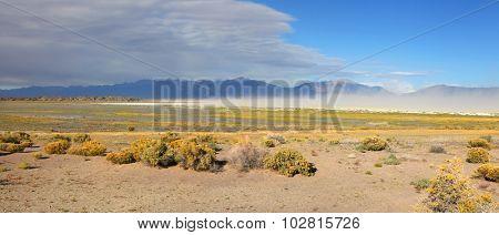 Scenic landscape near San Luis park in Colorado