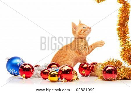 Cute little red kitten playing with golden tinsel near colorful and sparkly Christmas toys